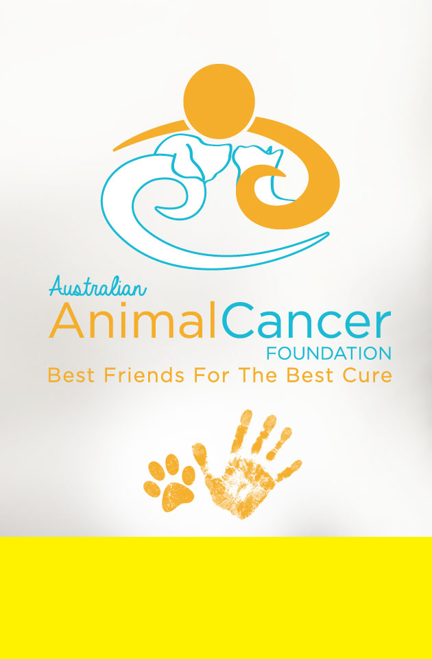 Home of the Australian Animal Cancer Foundation